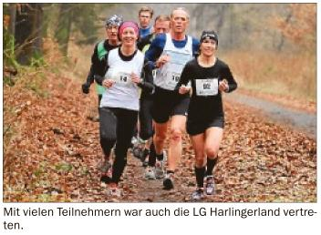 cross-waldlauf-2013-02